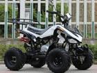 四輪バギー ATV ICEBEAR