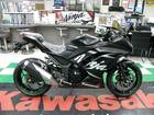 Ninja 250 ABS KRT Winter Test Edition