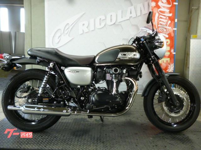 Motorcycle Review: 2019 Kawasaki W800 Street   Driving