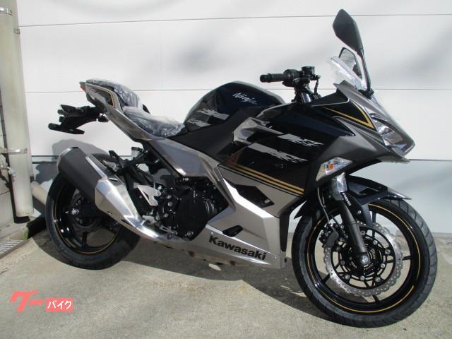 Kawasaki Ninja 250 New Bike Silverblack Km Details