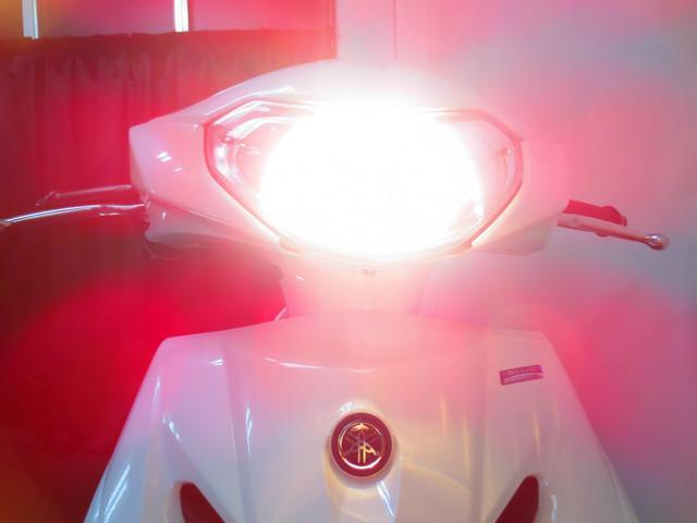●別途有料オプションにて LEDヘッドライトも追加できます●
