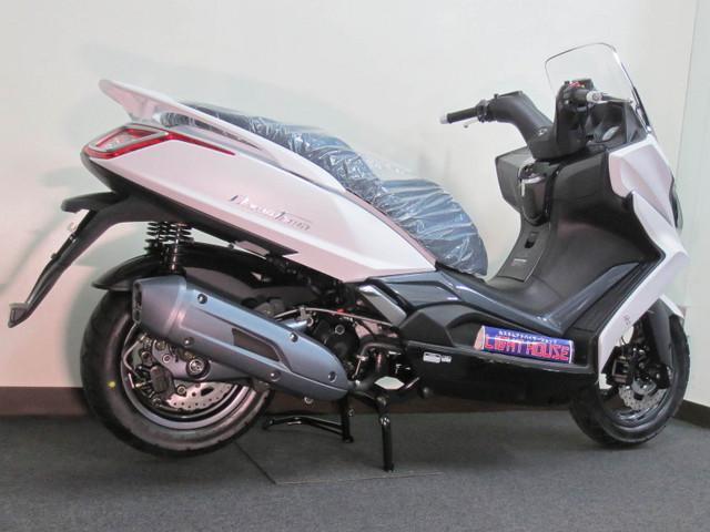 小型AT2輪免許で運転できるビックスクーターです 任意保険もお得なファミリーバイク特約が使えます