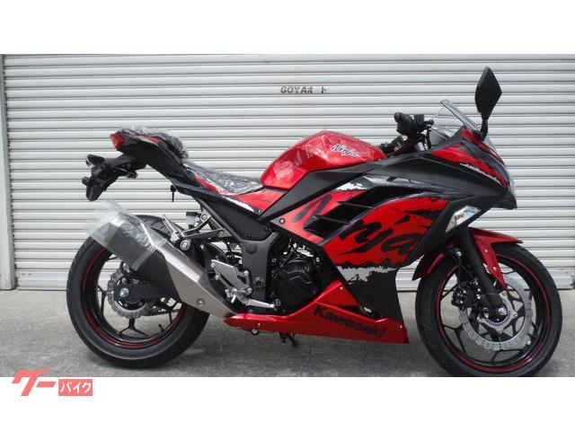 カワサキ Ninja 250 ABS Special Edition