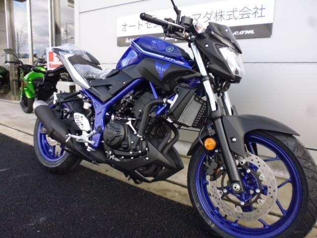 ヤマハ MT-25 2017の画像(愛知県