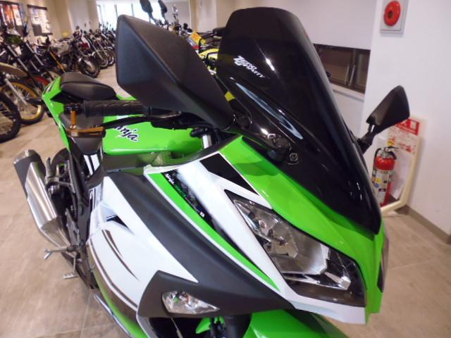 カワサキ Ninja 250 ABS SEの画像(愛知県