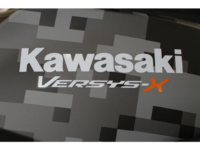 カワサキ VERSYSーX 250 ツアラー SPの画像(愛知県