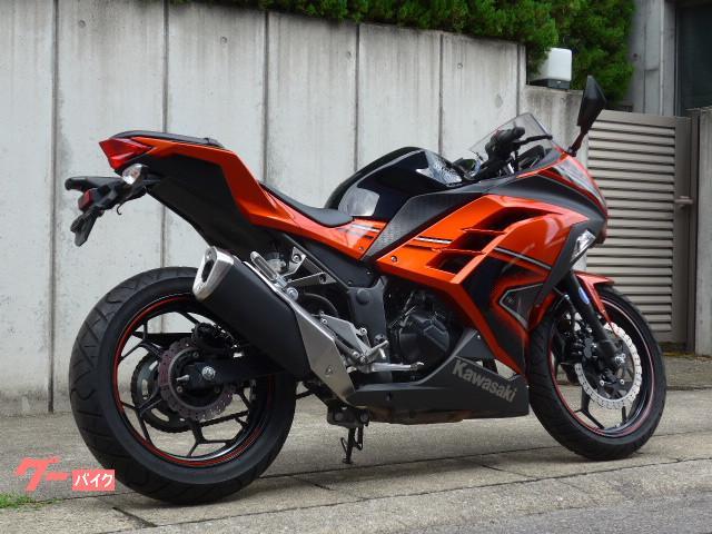 カワサキ Ninja 250 Special Edition ETC付の画像(愛知県