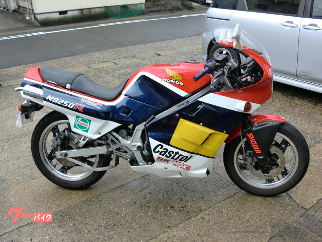 NS250F