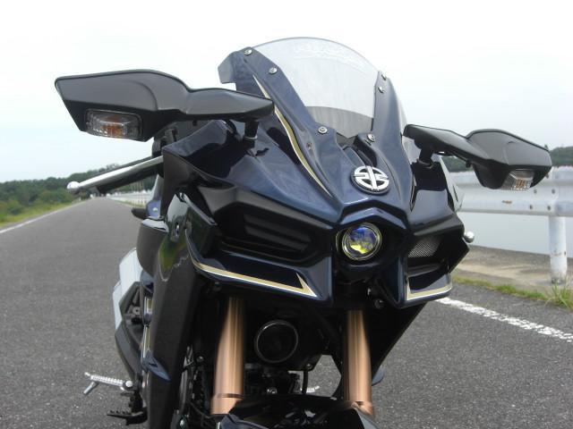 カワサキ Z125PRO H2風カスタムの画像(愛知県