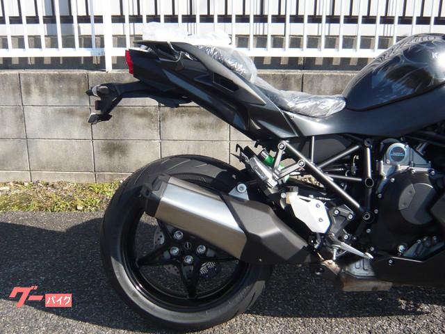 カワサキ Ninja H2 SXの画像(愛知県