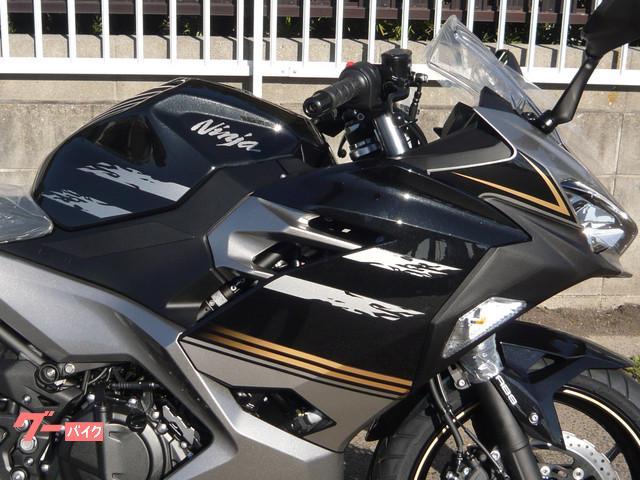 カワサキ Ninja 250 2019年モデル ニューカラーの画像(愛知県