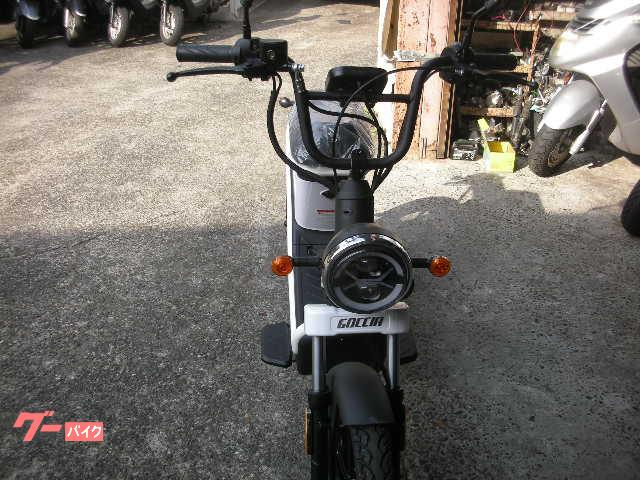 電動スクーター 電動スクーター GOCCIA GEV600の画像(静岡県