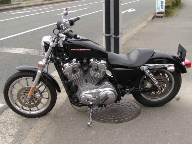 HARLEY-DAVIDSON XL883Lの画像(静岡県