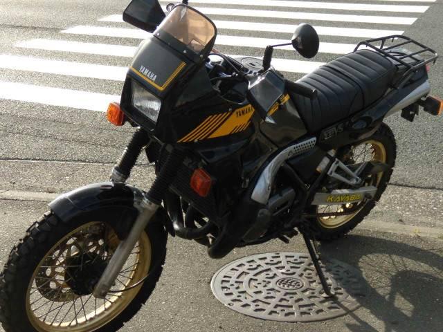 ヤマハ TDR250の画像(静岡県