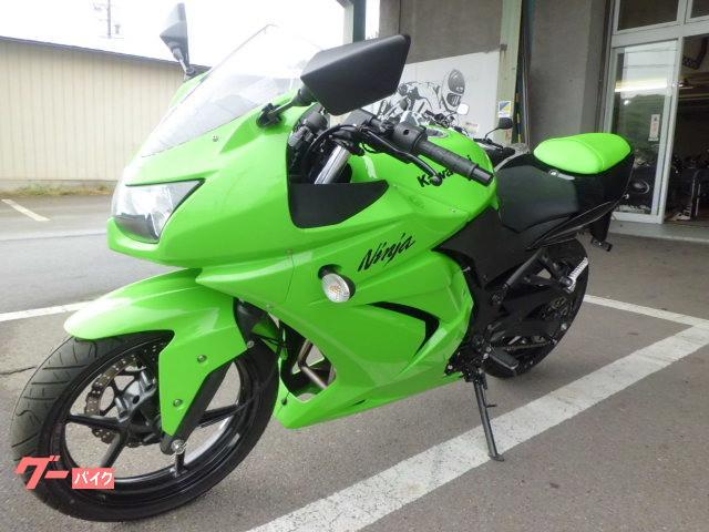 カワサキ Ninja 250Rの画像(長野県