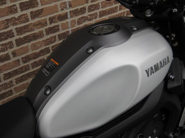 ヤマハ XSR900 2018年モデル新型の画像(愛知県