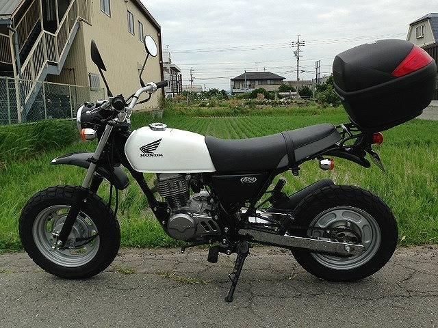 ホンダ Ape100の画像(愛知県
