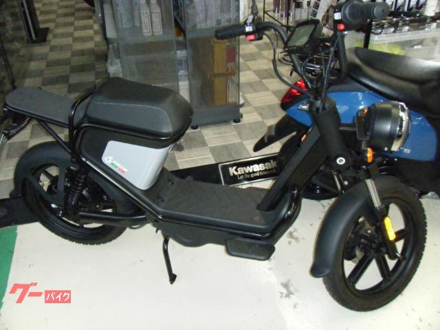 GEV600電動スクーター