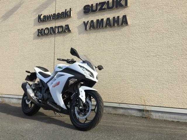 カワサキ Ninja 250の画像(愛知県