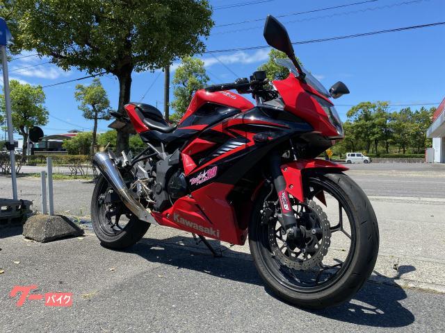Ninja 250SL