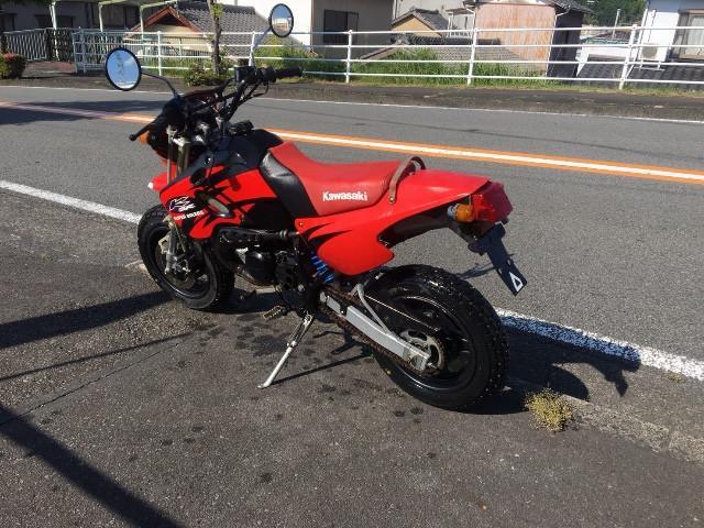 カワサキ KSR-IIの画像(静岡県