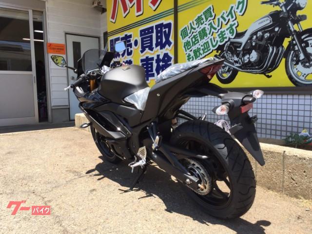 ヤマハ YZF-R25 RG43Jの画像(石川県