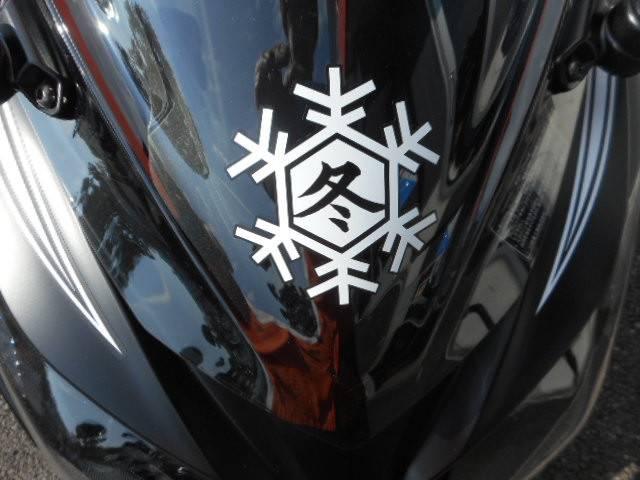 カワサキ Ninja250ABS KRT WinterTestEdition新車の画像(愛知県