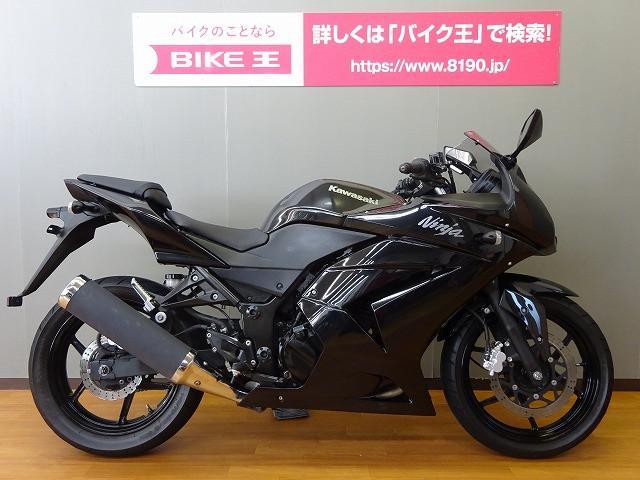 カワサキ Ninja 250R フルノーマルの画像(長野県