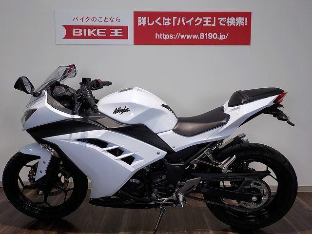 カワサキ Ninja 250 フェンダーレスキット付の画像(三重県