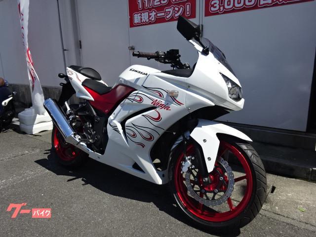 カワサキ Ninja 250R 改 ファイヤーパターン外装の画像(三重県
