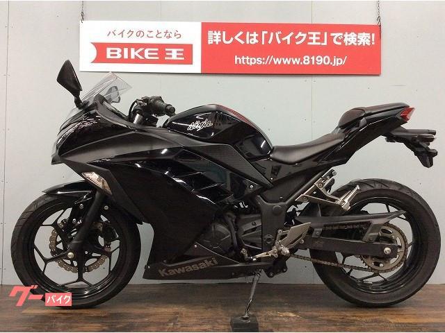 カワサキ Ninja 250 デイトナグリップカスタム ヘルメットホルダー付 2014モデルの画像(愛知県