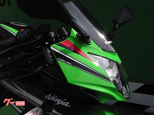 カワサキ Ninja 250SL ABS KRTエディションの画像(愛媛県
