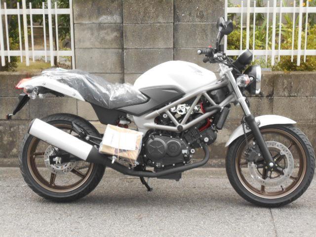 ホンダ VTR250 タイプLDの画像(愛媛県