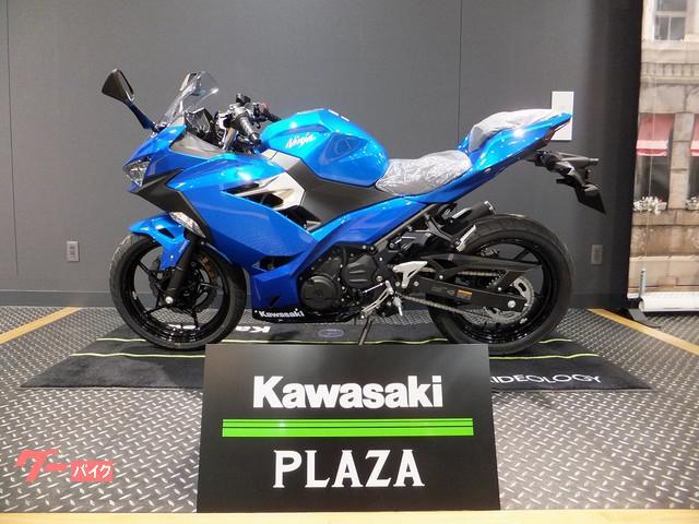 カワサキ Ninja 250 2018年モデルの画像(栃木県