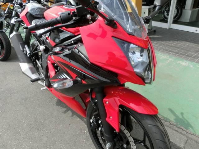 カワサキ Ninja 250SLの画像(群馬県