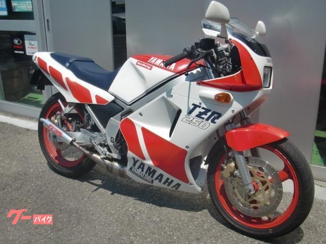 ヤマハ TZR250の画像(群馬県
