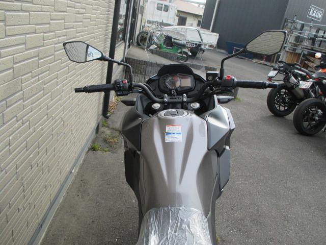 カワサキ VERSYS-X 250 ABSの画像(群馬県