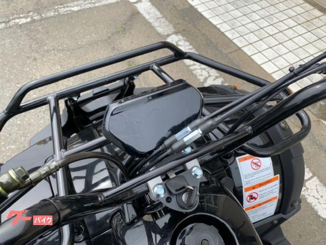 バギー バギー ATV 四輪バギーの画像(群馬県