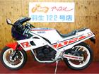 ヤマハ FZ400R デイトナカラー ノーマル 46Xの画像(埼玉県