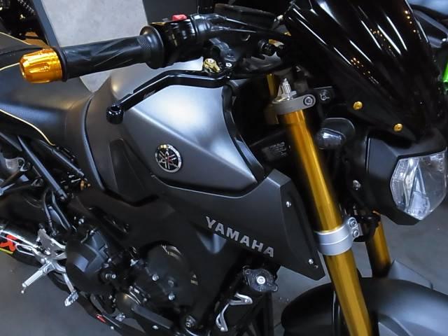 ヤマハ MT-09 ABSの画像(北海道