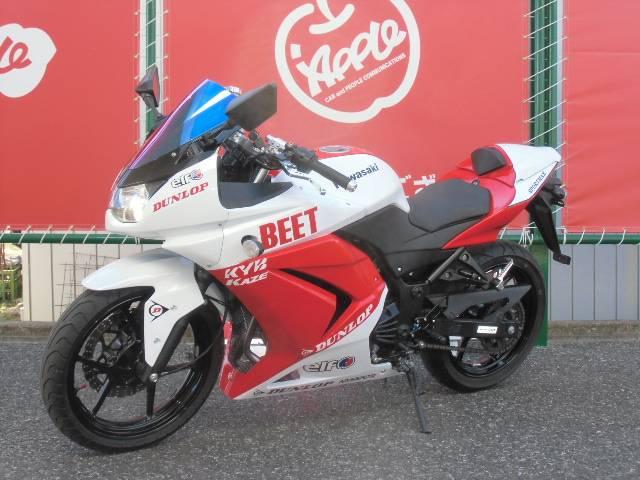 カワサキ Ninja 250R  BEET仕様の画像(群馬県