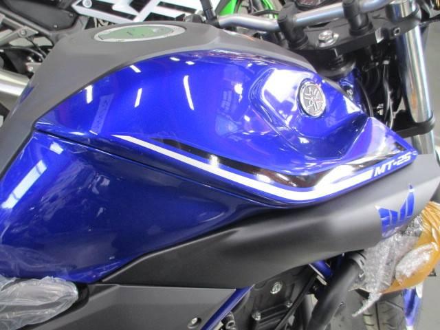 ヤマハ MT-25 ブルーの画像(茨城県