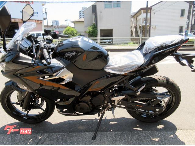 カワサキ Ninja 400の画像(東京都