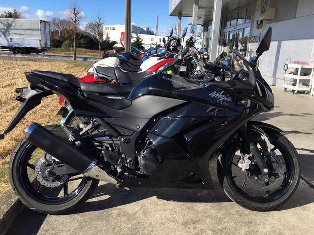 カワサキ Ninja 250Rの画像(群馬県