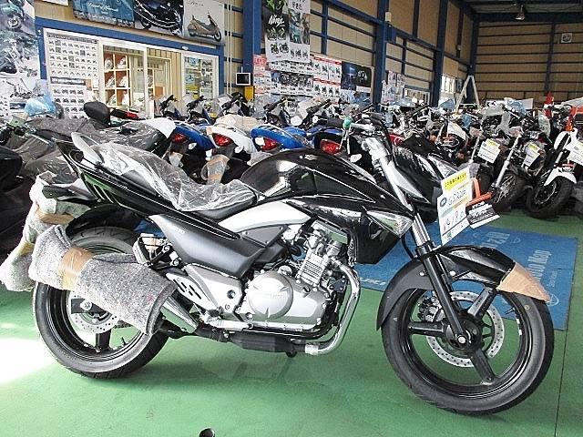スズキ GSR250 ブラックの画像(茨城県