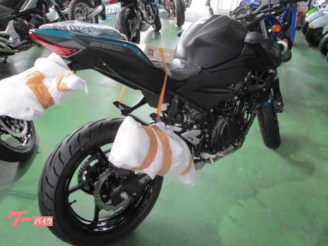 カワサキ Z250 2021の画像(茨城県