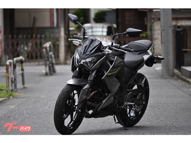 カワサキ Z250 ABS '17モデルの画像(東京都