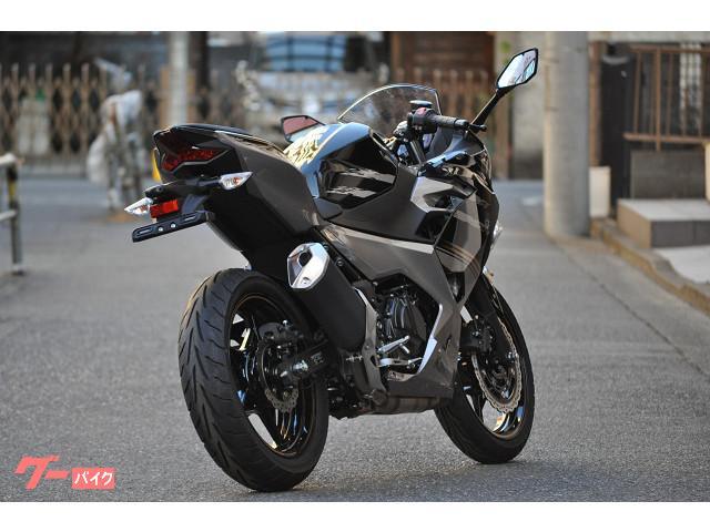 カワサキ Ninja 250 ABS '19モデルの画像(東京都