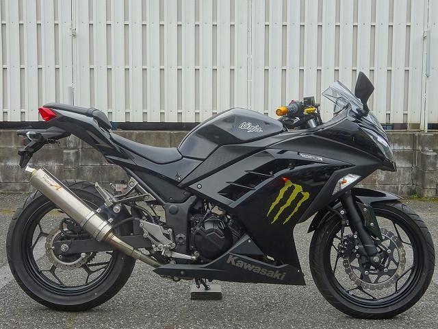 カワサキ Ninja 250 1オーナー HID 公認マフラーの画像(埼玉県