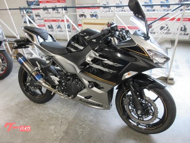 Ninja 250 ABS EX250P型 ETC2.0